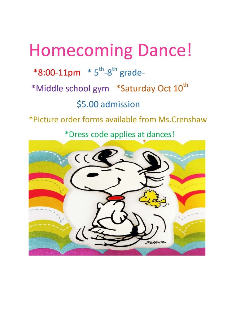 MS Homecoming Dance Flyer