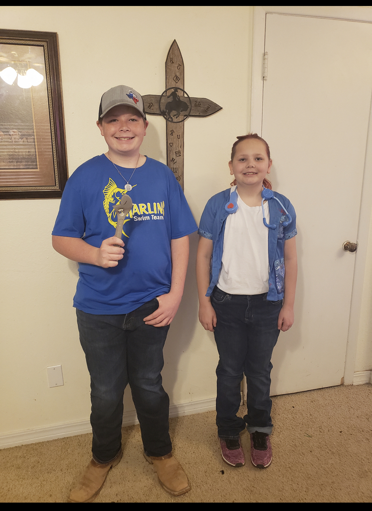 Students dressed for career day